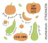 pumpkin  squash  zucchini ...   Shutterstock .eps vector #1756246256