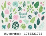Set Of Tropical Leaves And...