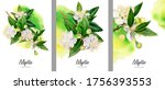 set of card with myrtle flowers ... | Shutterstock . vector #1756393553