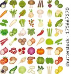 vegetables | Shutterstock .eps vector #175667270