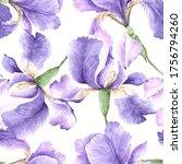 Pattern Lilac Watercolor Iris...