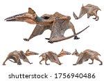 Quetzalcoatlus  Dinosaur On...