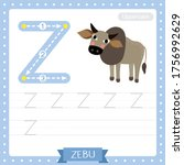 Letter Z Uppercase Cute...