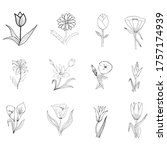 set of floral elements for your ... | Shutterstock .eps vector #1757174939
