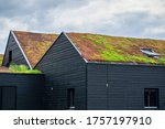 Small photo of Buildings with a green roof completely covered with vegetation. Extensive green sustainable sedum barn roof with succulent plants. Roof greening with succulents. Skylight in the middle of the roof