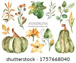Green Pumpkins  Leaves And...