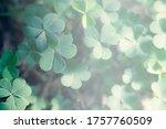 Lucky Irish Four Leaf Clover I...