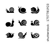 Snail  Icon Or Logo Isolated...