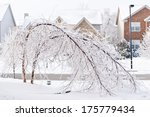 trees bent over from the weight ... | Shutterstock . vector #175779434
