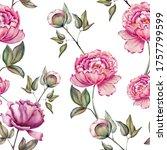 hand drawn watercolor pink...   Shutterstock . vector #1757799599