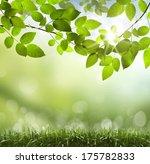 spring or summer season... | Shutterstock . vector #175782833