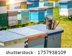 Colourful Hives Of Bees On A...