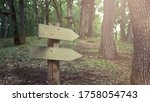 Two Blank Wooden Directional...