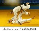 Martial Arts. Sparing Portners. ...