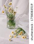 conceptual rustic jar vase... | Shutterstock . vector #1758083519