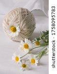 still life composition of white ... | Shutterstock . vector #1758095783