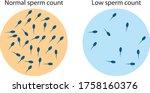 low sperm count in seminal...   Shutterstock .eps vector #1758160376