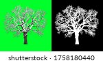 Front View Winter Tree 3d...