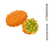 Kiwano Vector Illustration...