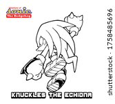 Sonic Super Herro Mascot...