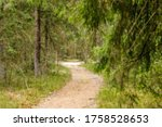 blurred forest  path among... | Shutterstock . vector #1758528653