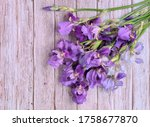 Bouquet Collected In A Bunch Of ...