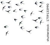 flying swallow birds... | Shutterstock .eps vector #1759133990