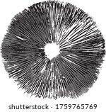 mushroom spore print vector  ... | Shutterstock .eps vector #1759765769
