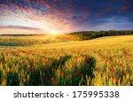 Colorful Summer Landscape On...
