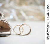 wedding rings | Shutterstock . vector #176029454