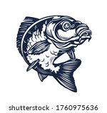 Carp Fish Vector Illustration.Common Carp Illustration. Isolated on white background.