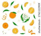 orange set. whole  cut  half ... | Shutterstock .eps vector #1761122909