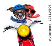 Stock photo motorbike couple at speed with helmet and crazy glasses 176114909
