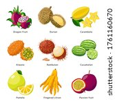 Exotic Fruits   Icon Set ...