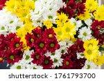 A Bouquet Of Chrysanthemums....