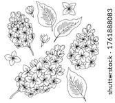 Lilac Flower Graphic Black...