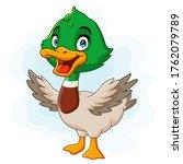 a cute duck cartoon isolated on ...   Shutterstock .eps vector #1762079789