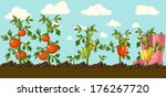vintage garden banner | Shutterstock .eps vector #176267720