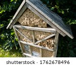 Insect hotel close up   shelter ...