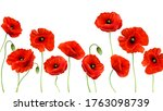 red poppy background. 3d... | Shutterstock .eps vector #1763098739