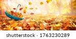Beautiful Autumn Background...
