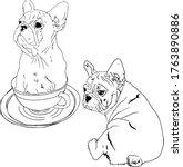 vector illustration of a set... | Shutterstock .eps vector #1763890886