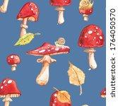 Fly Agaric Amanita Mushrooms...