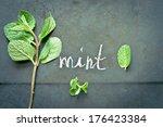 fresh green mint herb  | Shutterstock . vector #176423384