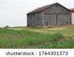 Northern Illinois  Usa. June 2...