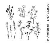 abstract wildflowers.... | Shutterstock . vector #1764333503