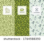 olive oil elegant packaging ... | Shutterstock .eps vector #1764588350