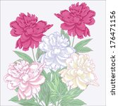 bouquet with white and pink... | Shutterstock .eps vector #176471156