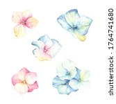watercolor set of inflorescence ... | Shutterstock . vector #1764741680