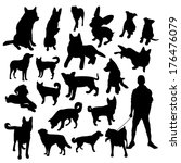 Stock vector set of dogs silhouette 176476079